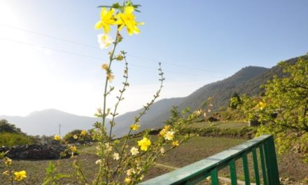 A Special Birthday: My First Solo Travel – Uttrakhand
