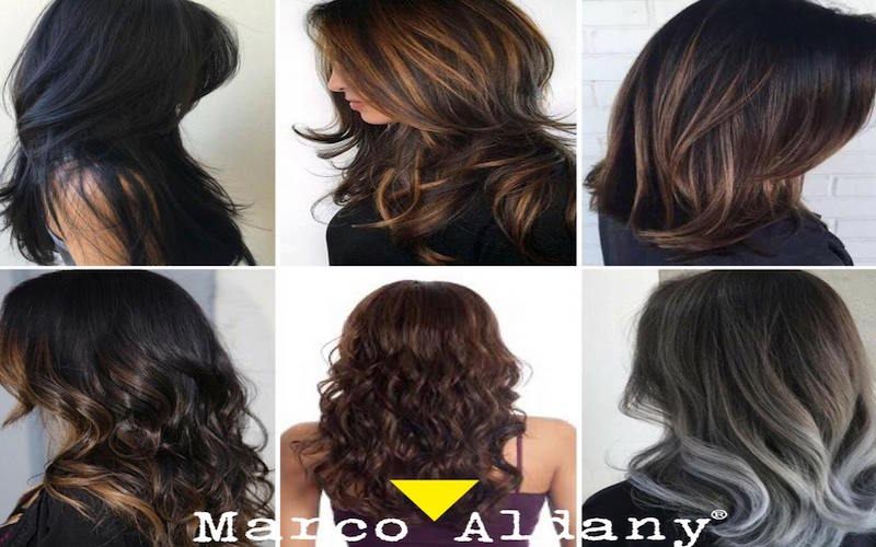 Marco Aldany:Spain's Largest Hairdressing Chain Now in Gurgaon