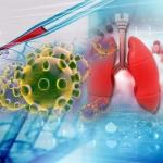 Coronavirus: The Whats & Hows