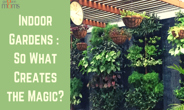 Indoor Gardens : So What Creates the Magic?