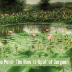 Finding a Lotus Pond- The New 'It-Spot' of Gurgaon